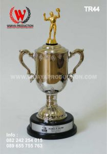 Jual Piala Trophy Untuk Volly